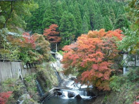 黒川温泉 旅館わかば の わかだんな日記-にしむら前の紅葉